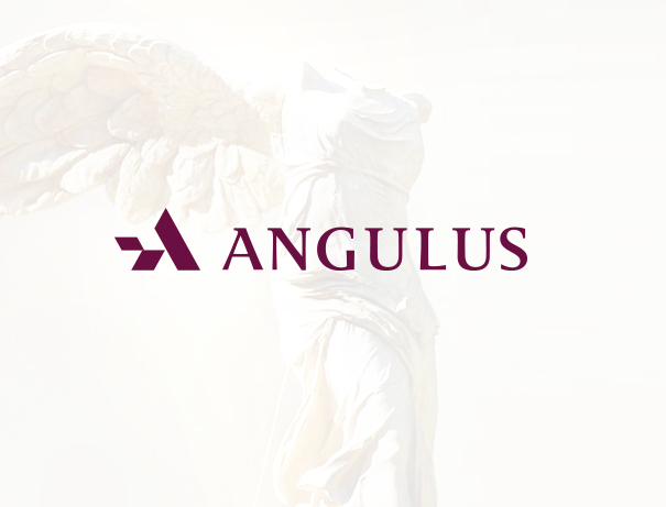 Angulus fine art financial services logo